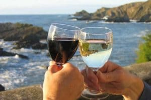 Wine Varna