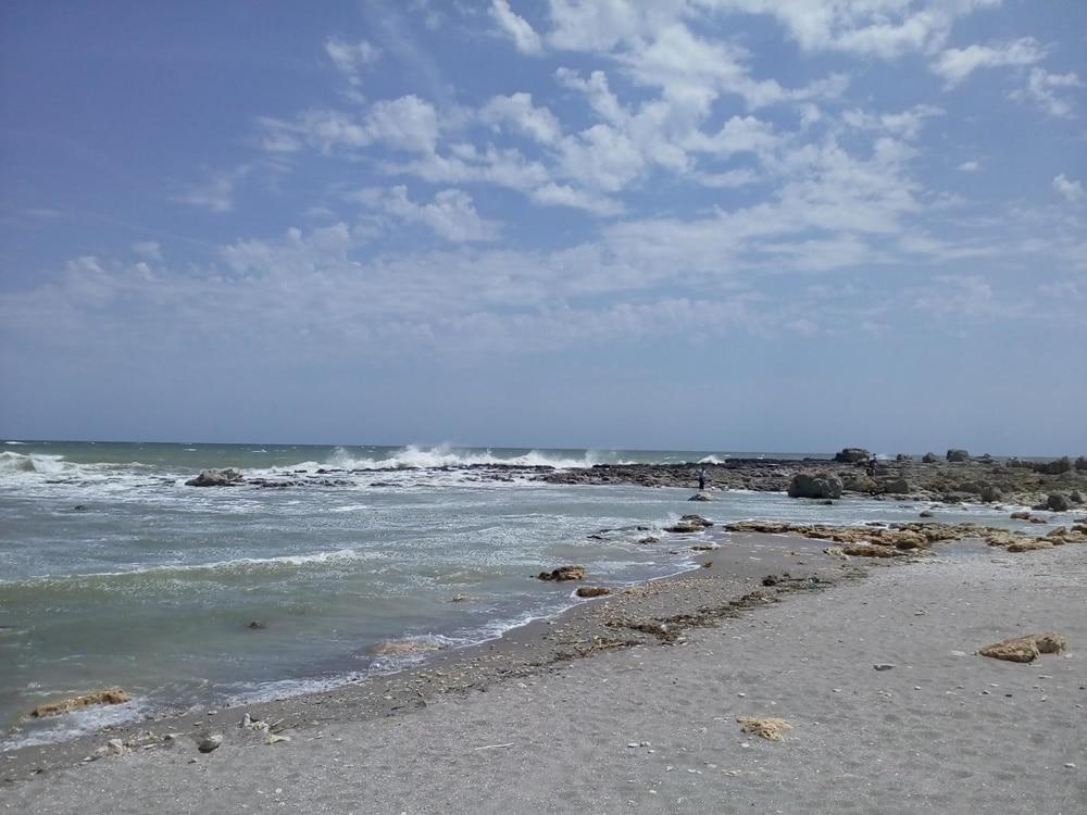 shabla little sea